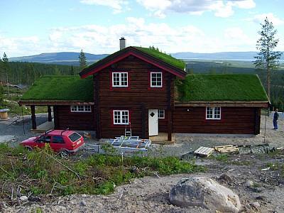 Norsklaft 15