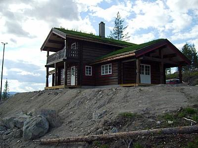 Norsklaft 17